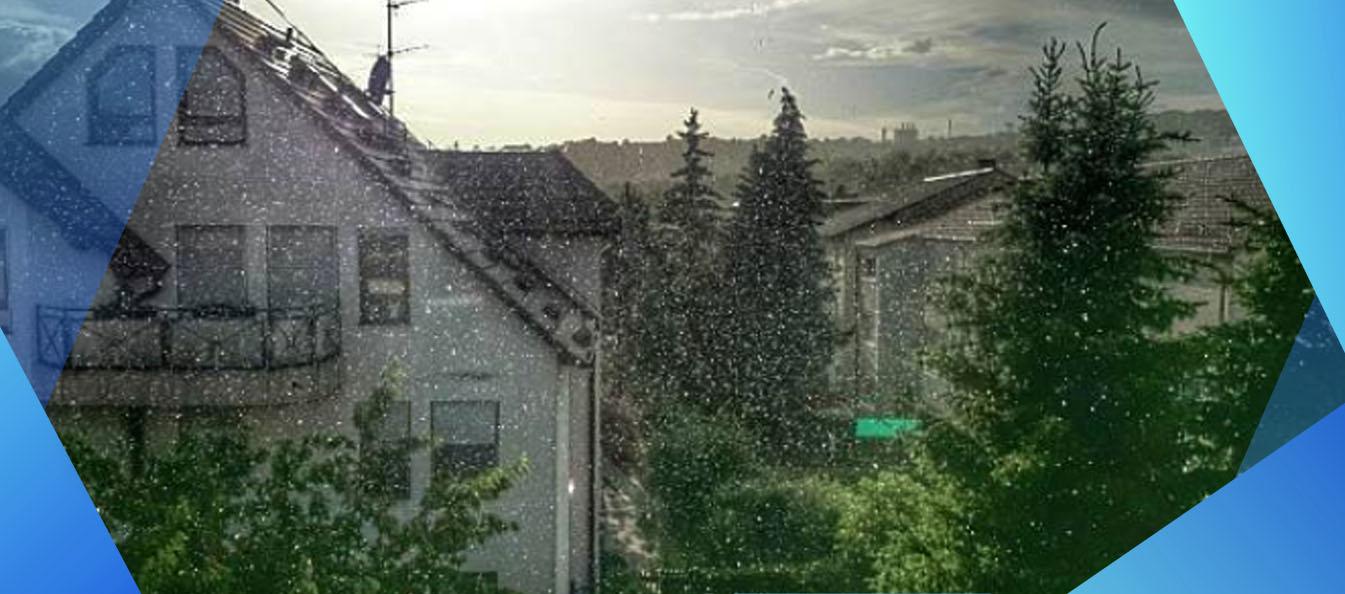 tips rumah aman nyaman musim hujan