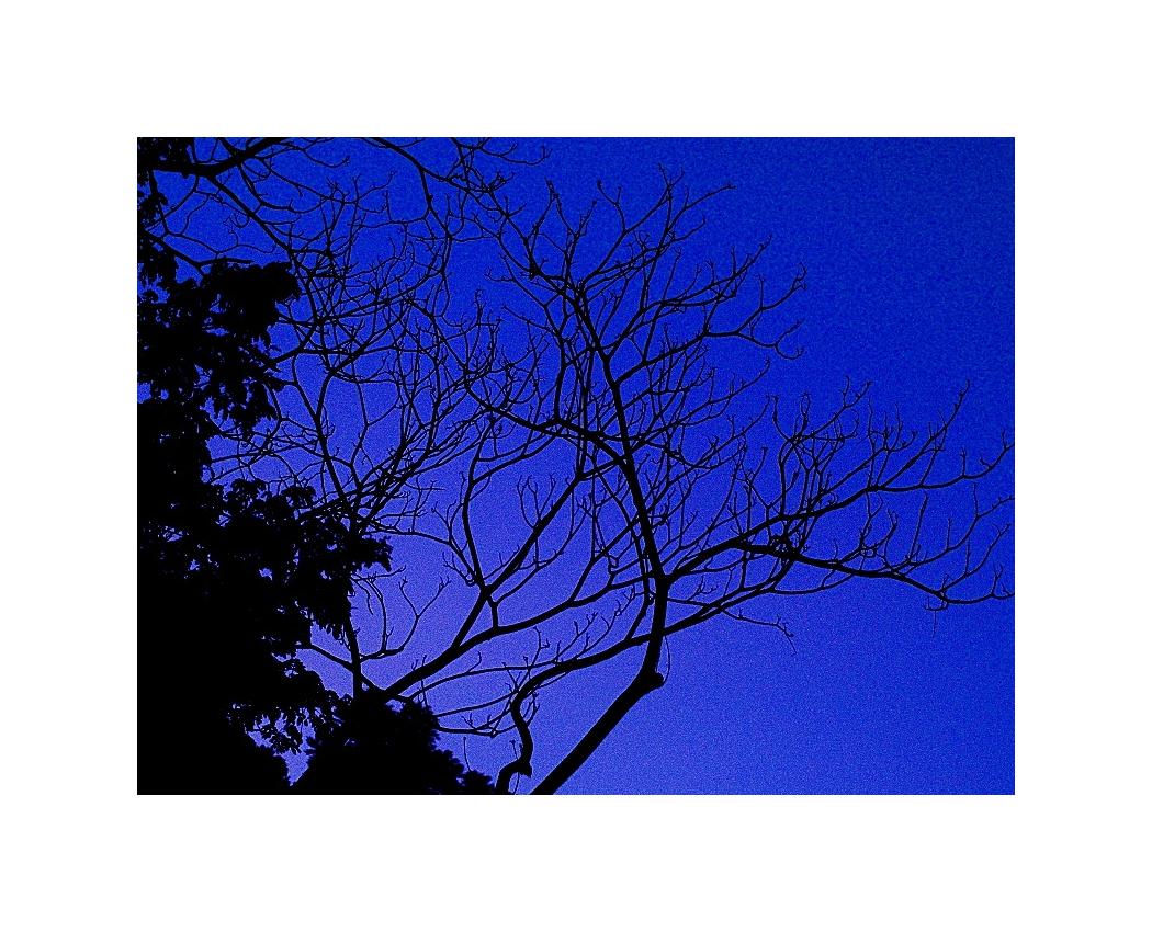 Enhancing The Morning Glow 05