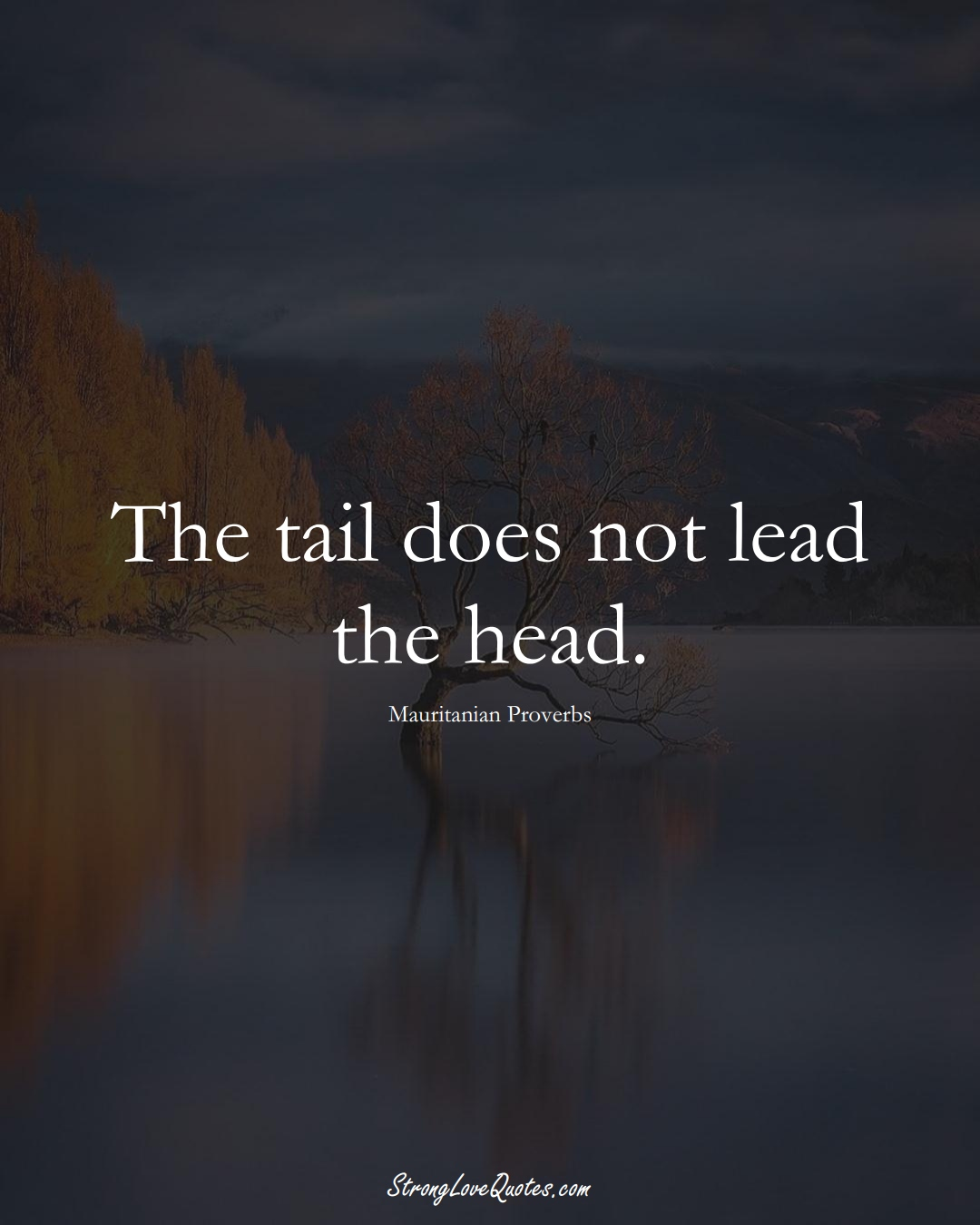 The tail does not lead the head. (Mauritanian Sayings);  #AfricanSayings