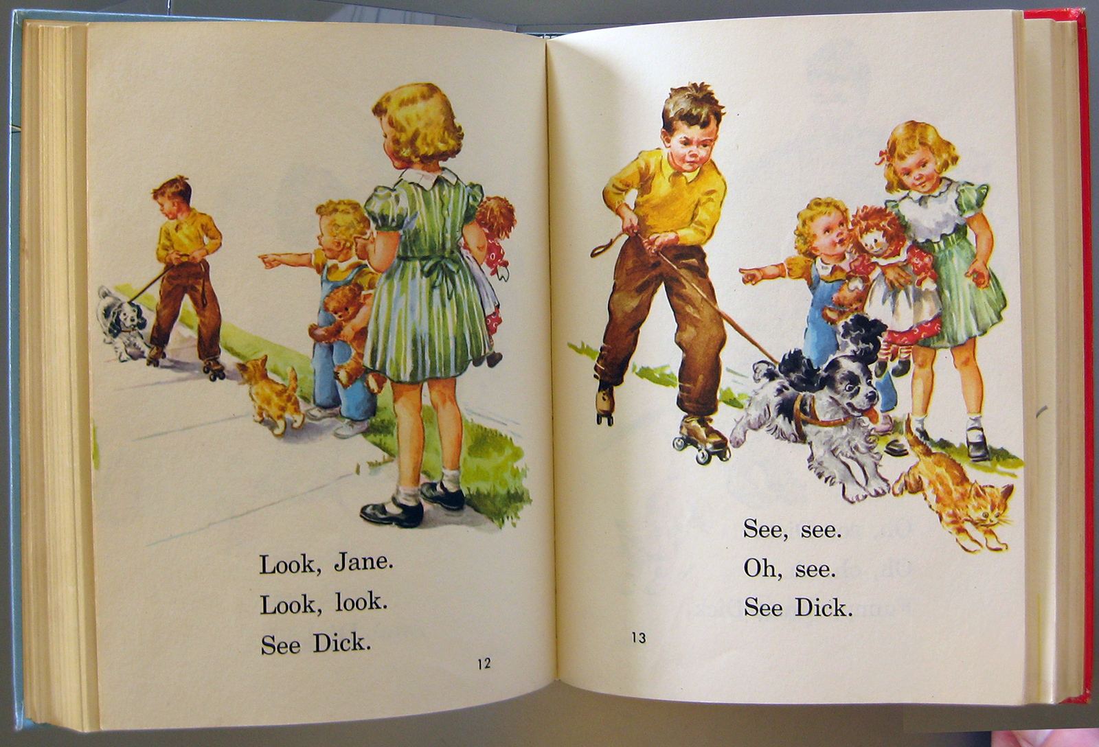 A Lianga Diary Remembering Dick And Jane