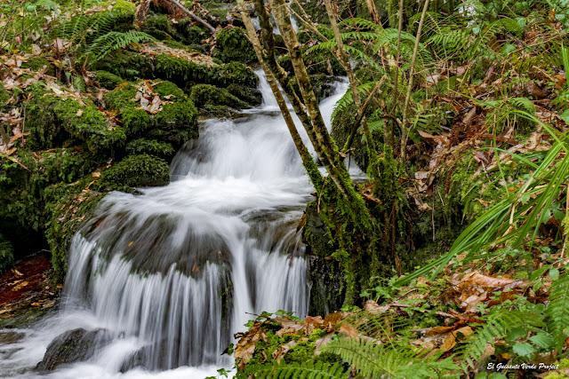 Rios en la Ruta del Agua, Taramundi - Asturias
