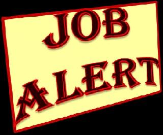 सहायक जिला शासकीय अधिवक्ता और नामिका अधिवक्ता की रिक्तियां | Recruitment Notification