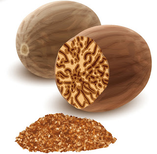 Artist's rendition of nutmeg and crossection of nutmeg, showing color striations and grated nutmeg spice.