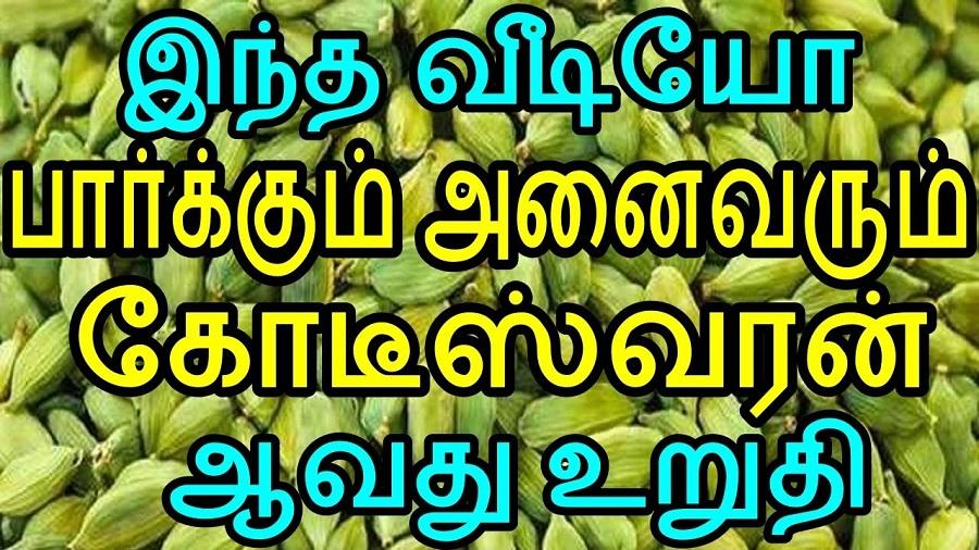 இந்த வீடியோ பார்க்கும் அனைவரும் கோடீஸ்வரன் ஆவது உறுதி!
