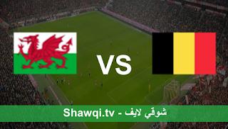 مشاهدة مباراة بلجيكا وويلز بث مباشر اليوم بتاريخ 24-03-2021 في تصفيات كأس العالم 2022