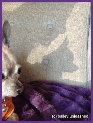 fun with shadows   via baileyunleashed.com