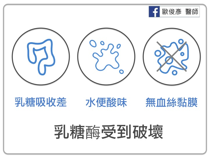 性 胃腸 炎 細菌