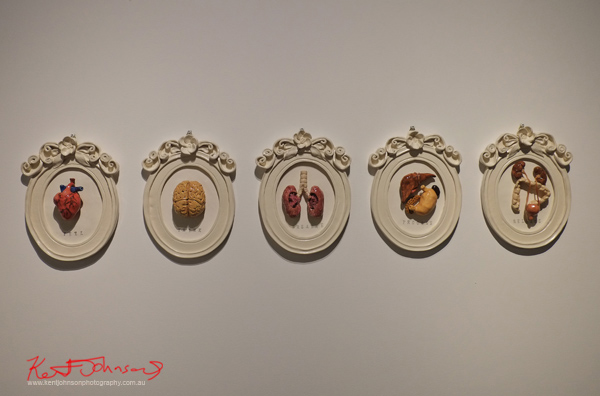 Julie Toke - Visceral Effect - Ceramic art, Heart, Brain, , Lung, Liver, Bowels..