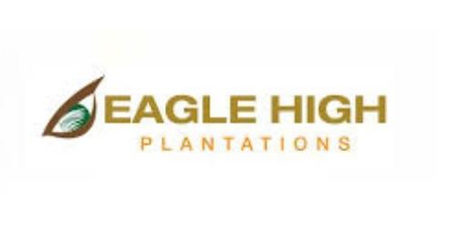 Lowongan Kerja Perkebunan PT Eagle High Plantations Tbk Tingkat D3 S1 Bulan Mei 2020