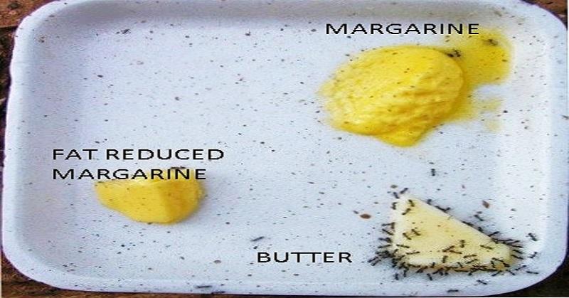 margarine oder butter abnehmen