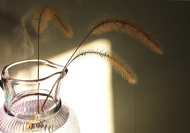 poem, poetry, illustration, photography, photo, sunlight, sunbeam, still-life, detail, afternoon, light, grasses, pitcher, glass, reflection, window, calm, tranquility, simple, style, interior, photograph, carafe, reflections, ray, writing, quiet