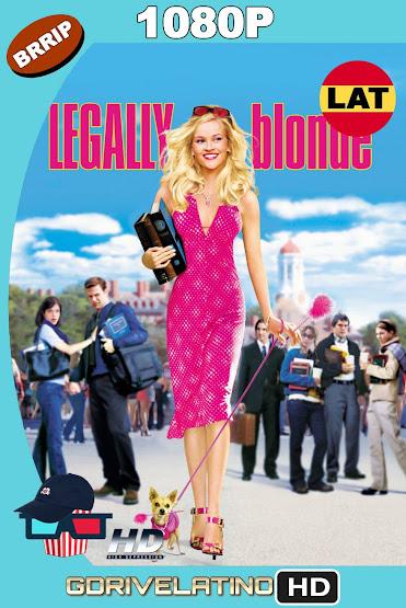 Legalmente Rubia (2001) BRRip 1080p Latino-Ingles MKV