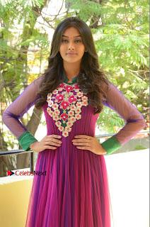 Actress Pooja Jhaveri Latest Stills in Purple Salwar Kameezt at Dwaraka Success Meet  0160.JPG
