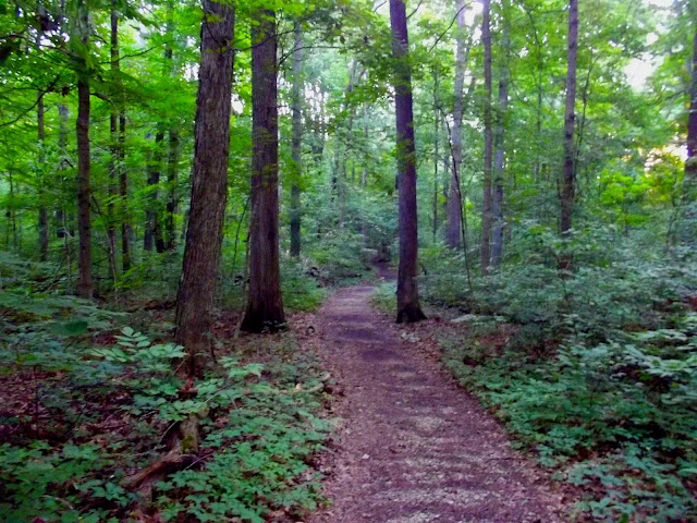 Spring Mill Hiking and Mountain Bike Trails