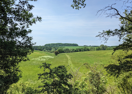 The view south from Ayot Greenway between points 4 & 5