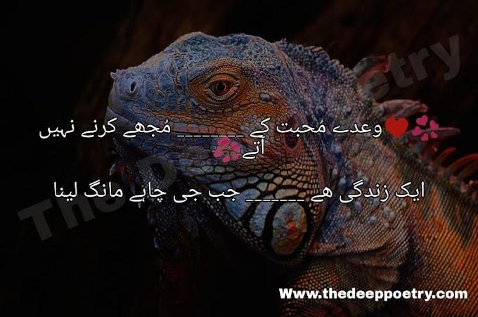 Wady Muhabhat K Mujhe Karne Nahi Haty   Ek Zindagi Hai Jab G Chai Mang Lena