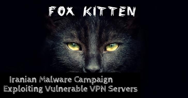 fox kitten