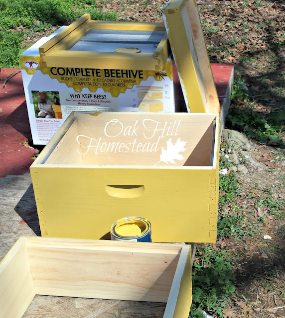 Basic equipment for beginning beekeepers: what to buy and how to save money. From oakhillhomestead.com