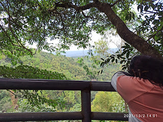 A viewpoint in the midst of meenmutty waterfalls trekking