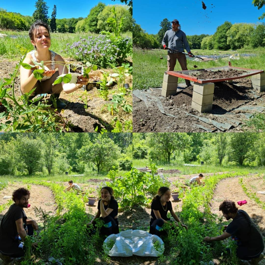 workaway, voluntourism, voluntouring, helpxchange, castle, new mayapur, france, volunteer programs, opportunities, harvesting, agriculture, fruitpicking, permaculture