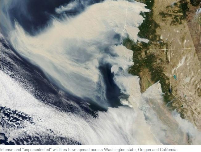 kebakaran hutan di amerika serikat