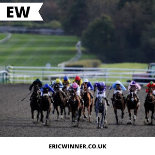 All weather racing at Lingfield and tips