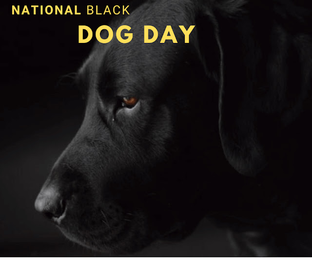 national black dog day 2020 national black dog day uk national black dog day images national black dog day 2018 national black dog day quotes national black dog day poster national black dog day today happy national black dog day national black dog awareness day national black and white dog day national black dog day 2019 what day is national black dog day when is national black dog day is today national black dog day when is national black dog day 2019 national black dog day 2019 uk 2016 national black dog day