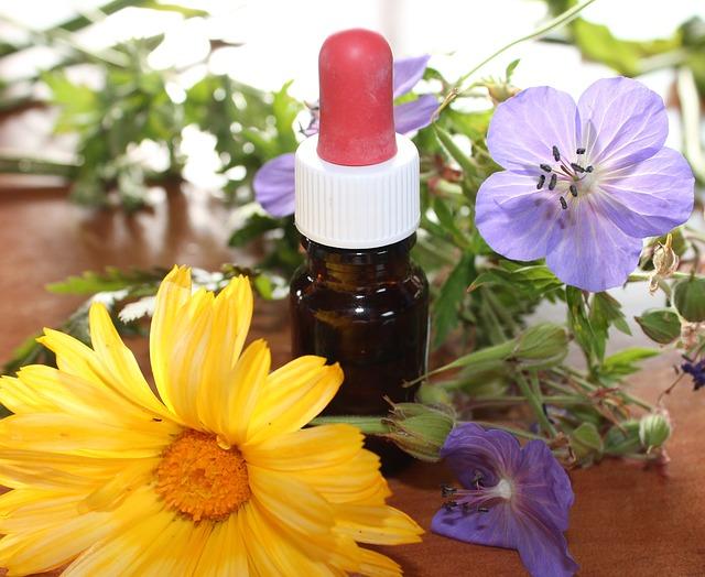 Hierbas medicinales para limpiar el colon