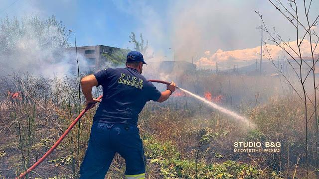 Πυρκαγιά στην περιοχή της Νέας Κίου Αργολίδας