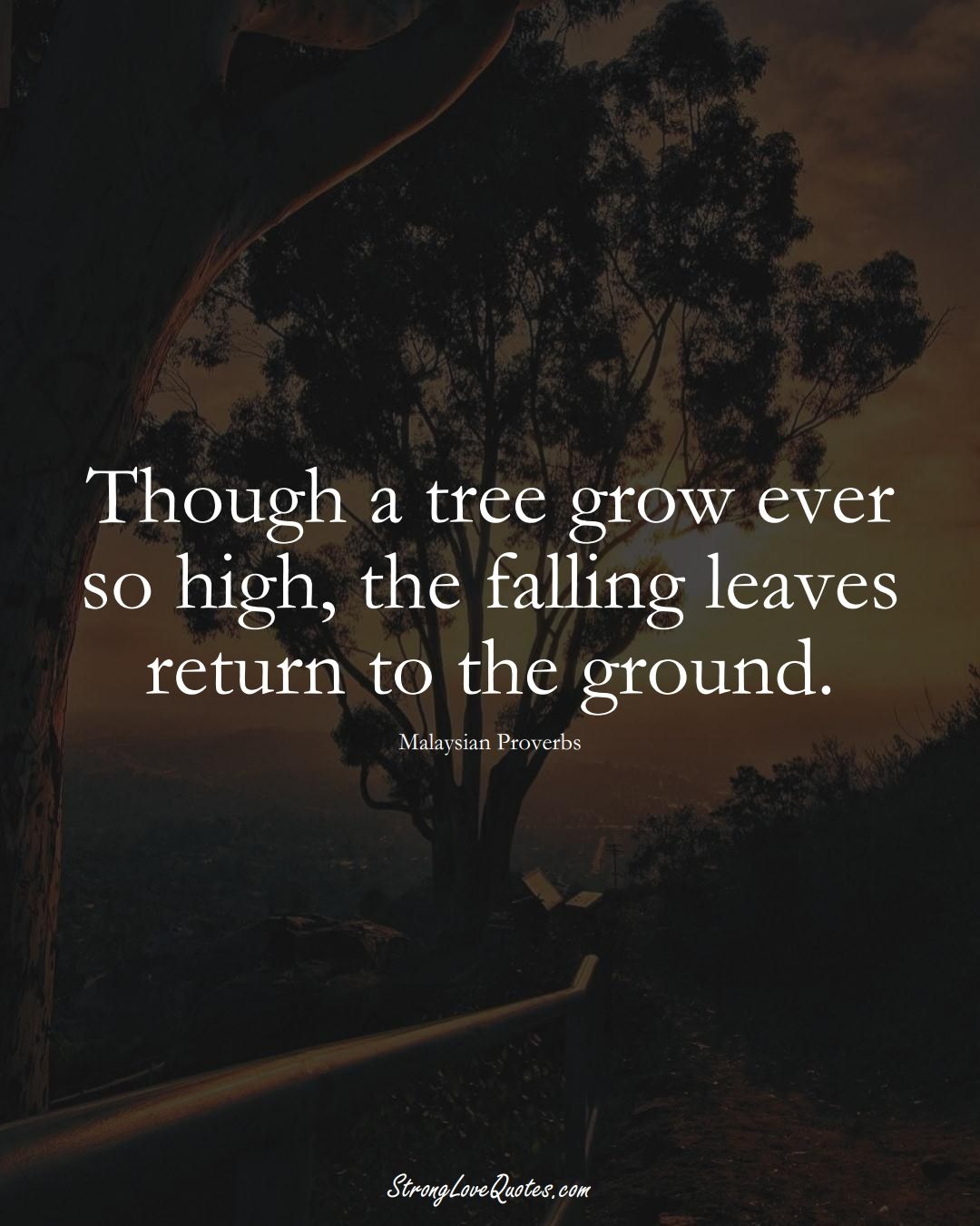 Though a tree grow ever so high, the falling leaves return to the ground. (Malaysian Sayings);  #AsianSayings