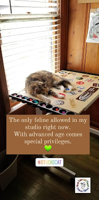 A calico cat is asleep next to a window with sun shining through. She is on a drawing table covered with stickers.