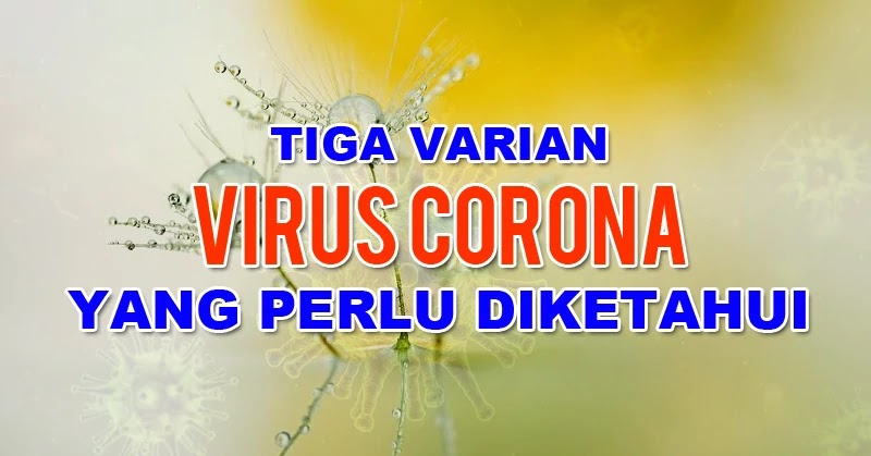 Jenis Corona