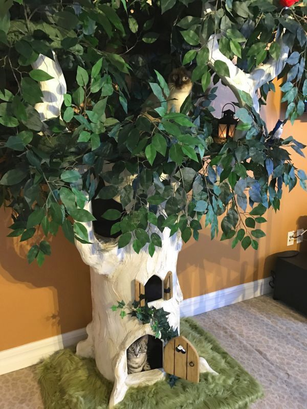 Luxury Cat Trees For Spoiled Rotten Kitties