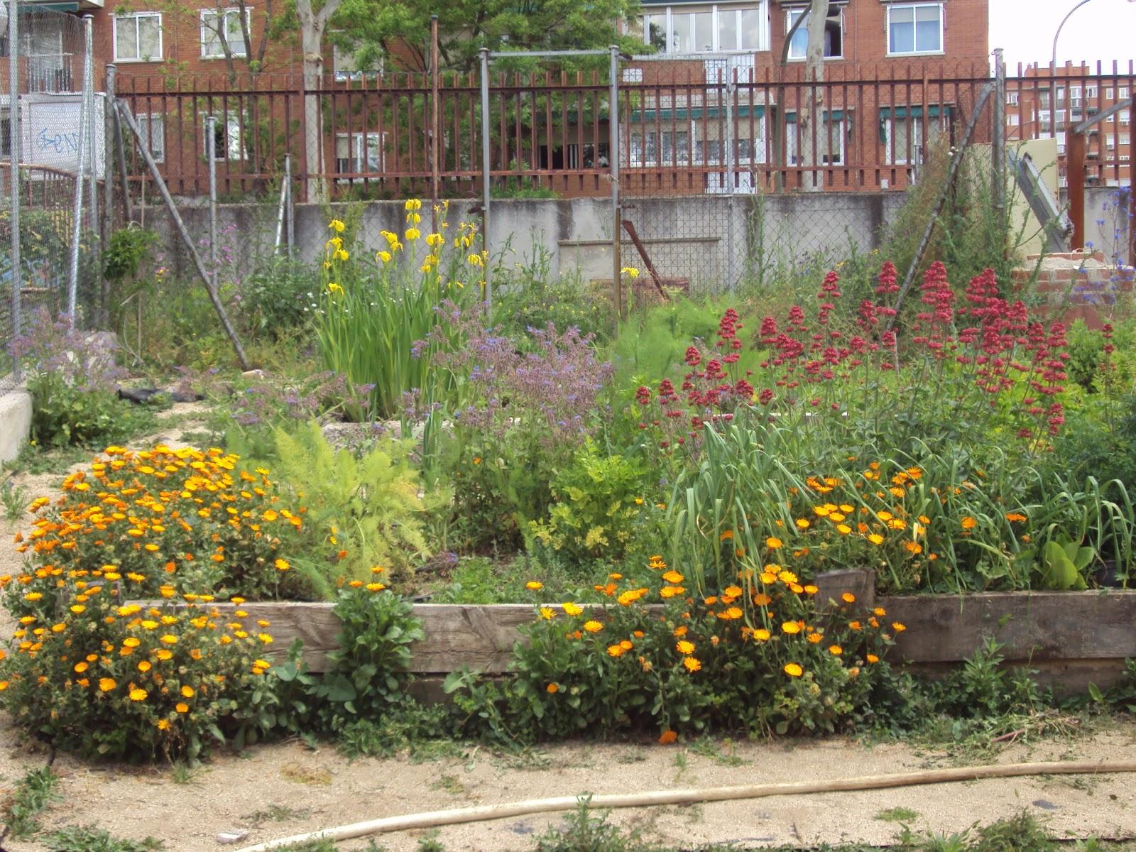 En torno al huerto gu a de plantas arom ticas - Como hacer un huerto en el jardin ...