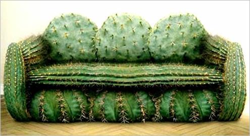 1278988715_crazy-cactus-couch.jpg