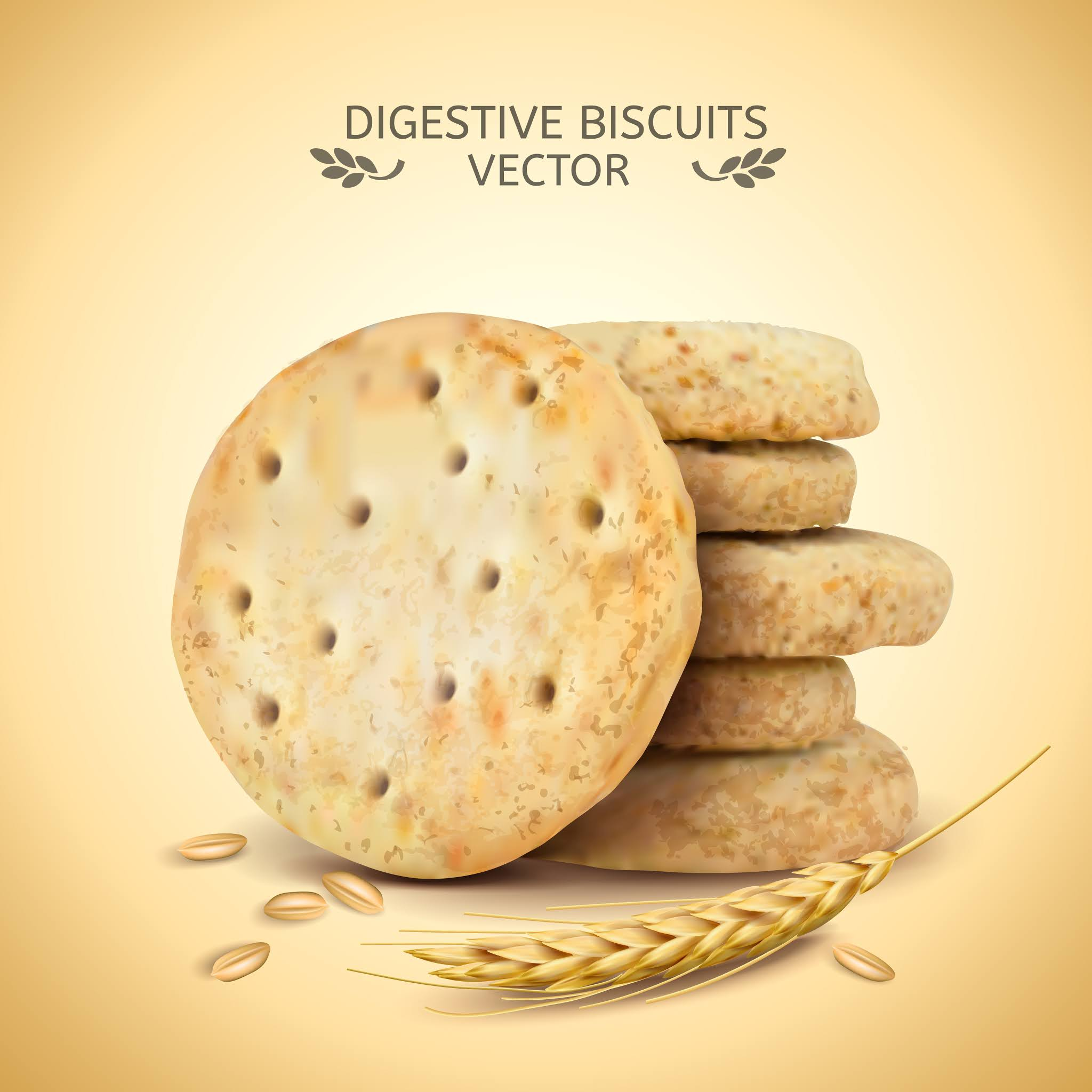 Vector designs the highest quality food products, biscuits and chocolate Design 3