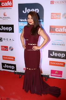 Red Carpet of Most Stylish Awards 2017 ~ Tisca Chopra (1).JPG