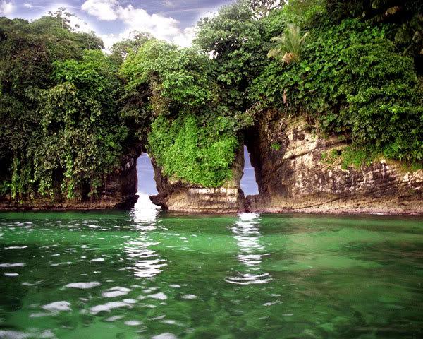 Panama Tourism and Travel: Bocas del Toro: Bird Island