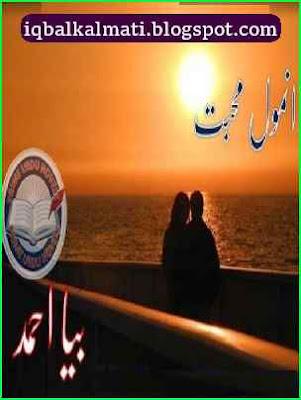 Anmol Mohabbat Novel