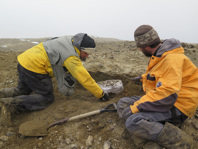 Paleontologists discover giant reptile in Antarctica