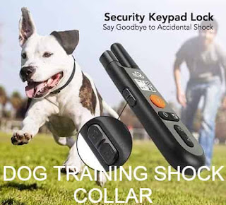 how to properly train a dog with a shock collar