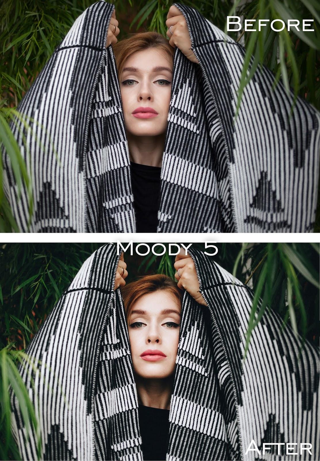 Desktop Lightroom Presets — Moody Authentic Lightroom Presets (LR)