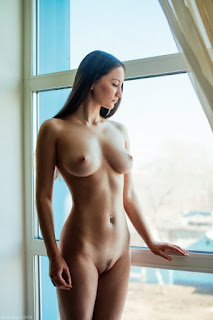 Nude model by the window with landing strip