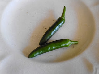 Two Serrano Peppers