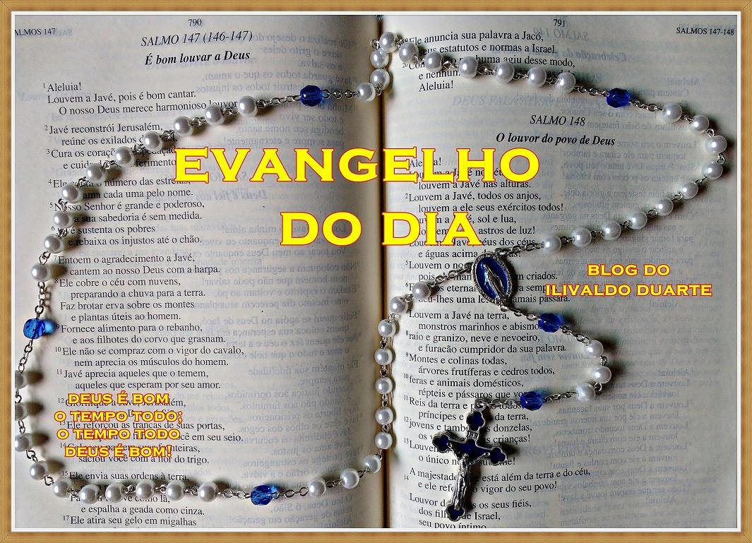 Blog do Ilivaldo Duarte  EVANGELHO DO DIA domingo 18920712a1179