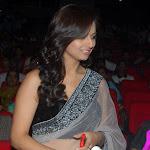 Isha Chawla At Prema Kavali Movie 100 Days Function Stills
