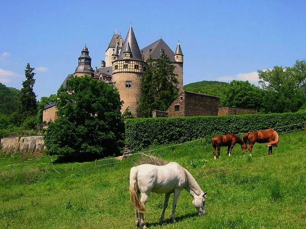 Burresheim Castle 5
