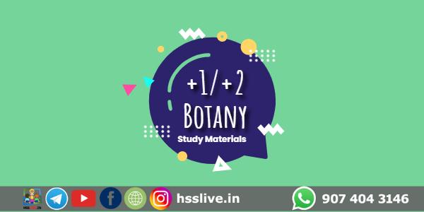 Hss-plusone-plustwo-botany-study-materials