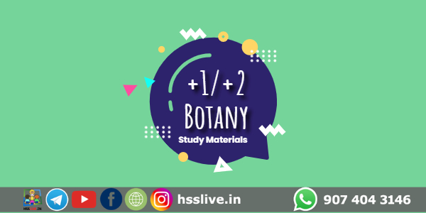 Higher Secondary Plus One/Plus Two Botany Class Notes