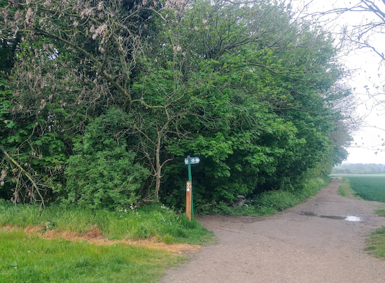 Turn left at the junction on Shenley footpath 12 and head W